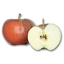 foto di mela mperatore dallago