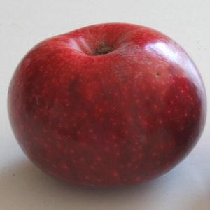 mela-drappoross anticopomario alberi di mele in vendita online