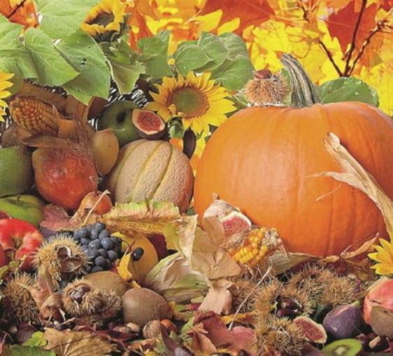 offerta promozionale Anticopomario sapori d'autunno pro