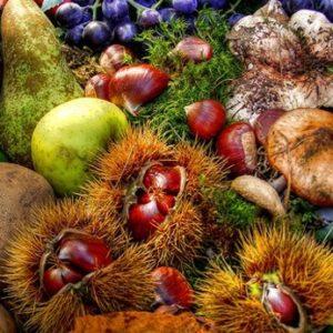 offerta promozionale sapori d'autunno Anticopomario
